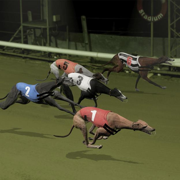 Cá cược đua thể thao ảo
